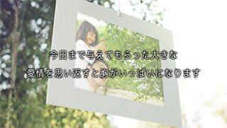 レタームービー ネイチャー 本編