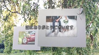 プレゼントムービー ネイチャー 本編パート